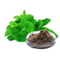 China Peppermint Extract on sale