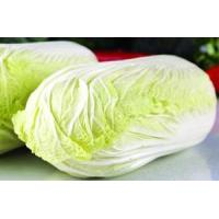 Buy cheap Fresh Vegetable coconut fiber from wholesalers