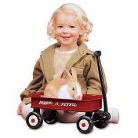 Buy cheap Children's & Baby's Gifts Radio Flyer - Little Red Wagon #5 from wholesalers