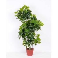 Wholesale 50*110CM Seven leaf tree GS-3040081 Tree&Plant from china suppliers