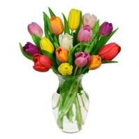Wholesale 15 Rainbow Tulips Bouquet from china suppliers