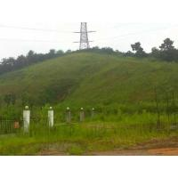 Buy cheap Slope Greening from wholesalers