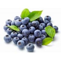 Buy cheap Blueberry Extract, Blueberry Leaf Extract from wholesalers