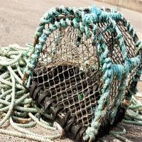 Buy cheap Sports Nets D-ShapedCrabTrap from wholesalers