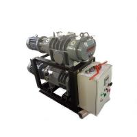 ZJ300+LGB80 Vacuum Unit specialized for oven