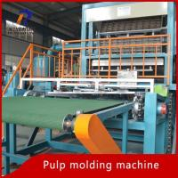 Wholesale Pulp Tray Machine Pulp Egg Tray Making Machine from china suppliers