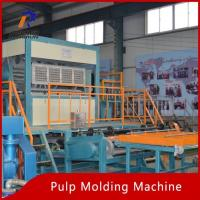 Wholesale Pulp Tray Machine Egg Tray Moulding Machine from china suppliers
