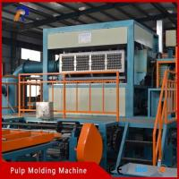 Wholesale Pulp Tray Machine Apple Tray Machine from china suppliers