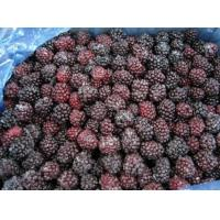 Buy cheap Frozen food IQF Blackberry from wholesalers