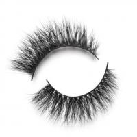 Buy cheap EXTENSIONS LASHES ALINA from wholesalers